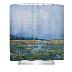Carolina Country Blues Shower Curtain by Gail Kent
