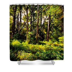 Carolina Forest Shower Curtain by David Smith