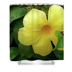 Shower Curtain featuring the photograph Carolina Jasmine by Larry Bishop