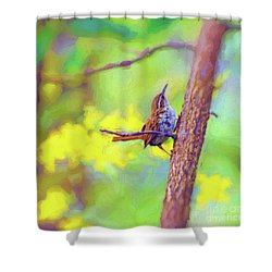 Shower Curtain featuring the photograph Carolina Wren In The Autumn Forest by Kerri Farley