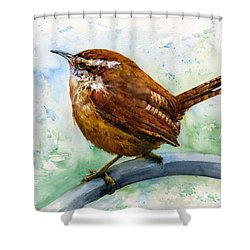 Carolina Wren Large Shower Curtain