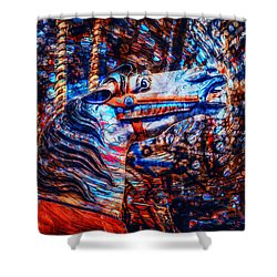 Carousel Dream Shower Curtain