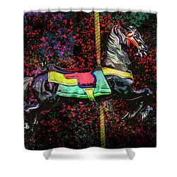 Carousel Number 16 Shower Curtain