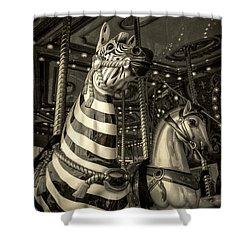 Carousel Zebra Shower Curtain by Caitlyn Grasso