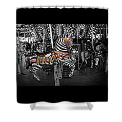 Carousel Zebra Series 2222 Shower Curtain