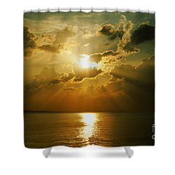Carpe Diem Shower Curtain by Andrew Paranavitana