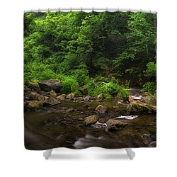 Shower Curtain featuring the photograph Carpenter Falls Pano by Mark Papke
