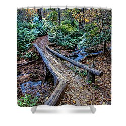 Carpet Of Leaves Shower Curtain by Dale R Carlson