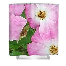 Carpet Of Pink Shower Curtain