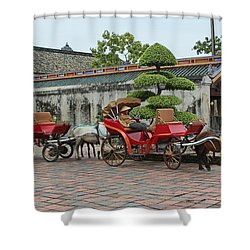 Carriage Rides Shower Curtain