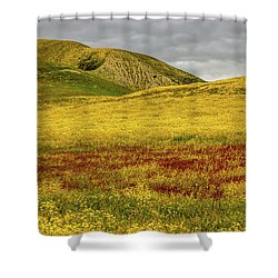 Shower Curtain featuring the photograph Carrizo  Plain Super Bloom 2017 by Peter Tellone