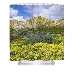 Carrizo Spring Shower Curtain by Bjorn Burton