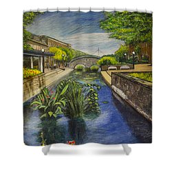Shower Curtain featuring the painting Carroll Creek by Ron Richard Baviello