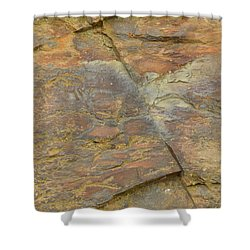 Carter's Lake Shower Curtain by Linda Geiger
