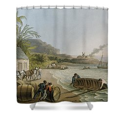 Carting And Putting Sugar Hogsheads On Board Shower Curtain by William Clark