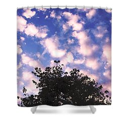Shower Curtain featuring the photograph Cartoon Clouds by Melissa Stoudt