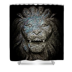 Carved Stone Lion's Head Shower Curtain by Loriental Photography