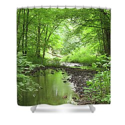 Shower Curtain featuring the photograph Carver Creek by Kimberly Mackowski