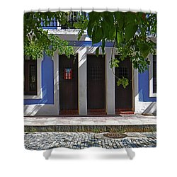 Casa Azul Shower Curtain