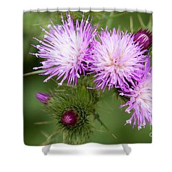 Casa Del Campo 1 Shower Curtain