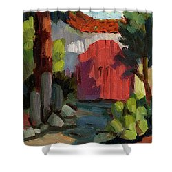 Casa Tecate Gate Shower Curtain by Diane McClary