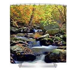 Cascade Brook Shower Curtain