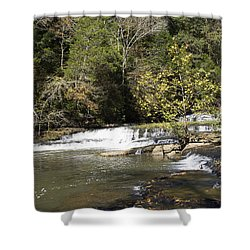 Cascade Falls Shower Curtain by Ricky Dean