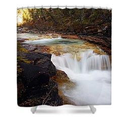 Cascade On Beauty Creek Shower Curtain by Larry Ricker