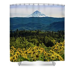 Cascade Spring Shower Curtain