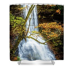 Cascades Deck View Shower Curtain
