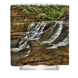Cascades Shower Curtain by Evelina Kremsdorf