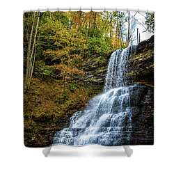 Cascades Lower Falls Shower Curtain