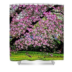 Cascading Dogwood Copyright Mary Lee Parker 17, Shower Curtain by MaryLee Parker