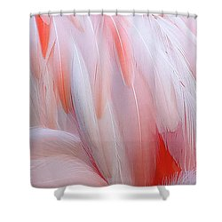 Cascading Feathers Shower Curtain by Elvira Butler