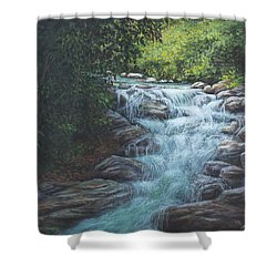 Shower Curtain featuring the painting Cascading Stream by Kim Lockman