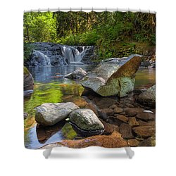 Cascading Waterfall At Sweet Creek Falls Trail Shower Curtain by David Gn