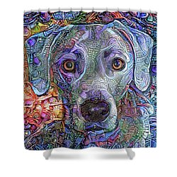 Cash The Blue Lacy Dog Closeup Shower Curtain