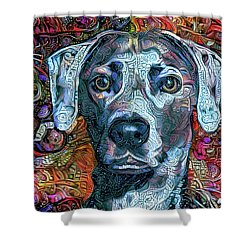 Cash The Blue Lacy Dog Shower Curtain