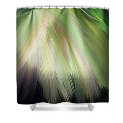 Casting Light Shower Curtain
