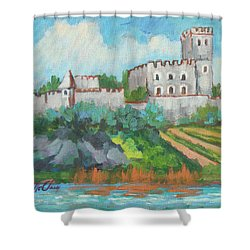 Shower Curtain featuring the painting Castle On The Upper Rhine River by Diane McClary