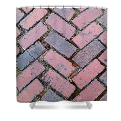 Castle Path Shower Curtain