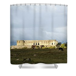Shower Curtain featuring the photograph Castle Ruin In Spotlight by Kennerth and Birgitta Kullman