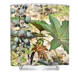 Shower Curtain featuring the photograph Castor Oil Plant by Ray Shrewsberry