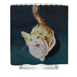 Cat -2 Shower Curtain