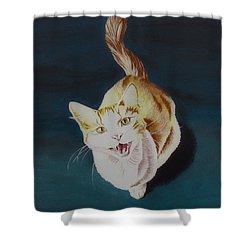 Cat -2 Shower Curtain