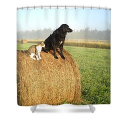 Cat And Dog On Hay Bale Shower Curtain