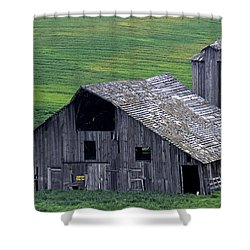 Cat Barn Shower Curtain