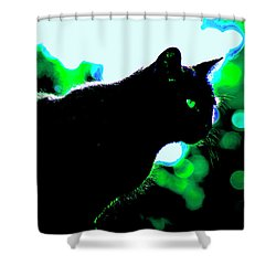 Cat Bathed In Green Light Shower Curtain by Gina O'Brien