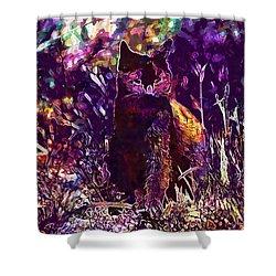 Shower Curtain featuring the digital art Cat Black Sun Meadow  by PixBreak Art