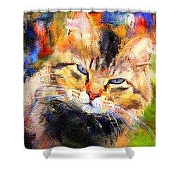 Cat Color Shower Curtain